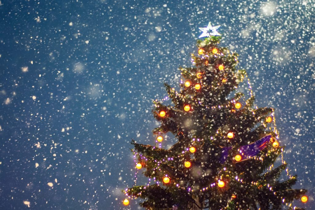 Christmas tree at night with lights and falling snow.