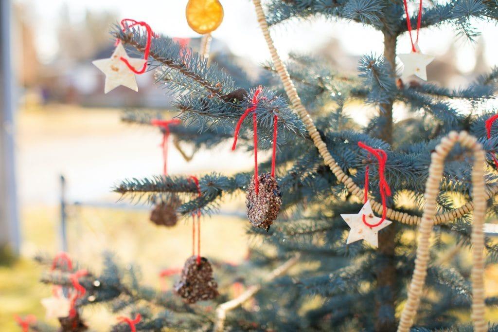 Outdoor christmas tree bird feeder